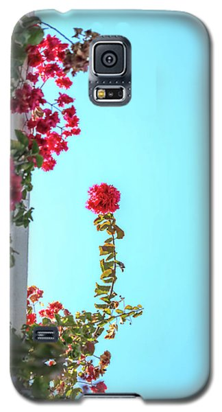Blooming Beauty Galaxy S5 Case