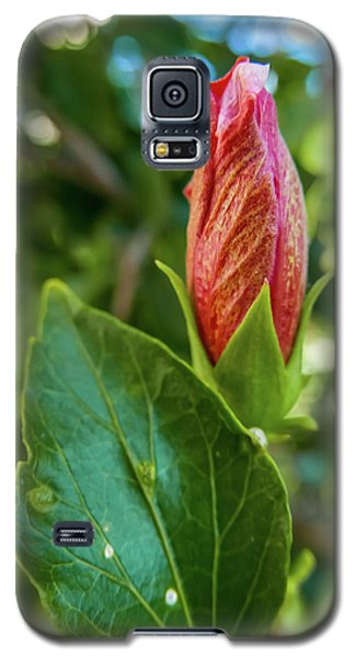 Blooming Hibiscus Galaxy S5 Case