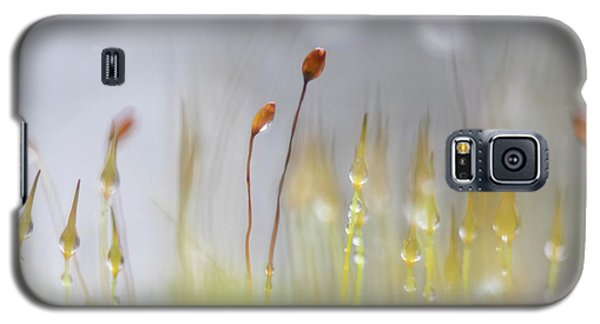 Blooming Moss Galaxy S5 Case