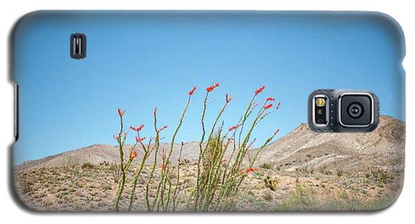 Blooming Ocotillo Galaxy S5 Case