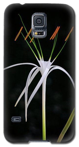 Blooming Poetry 3 Galaxy S5 Case