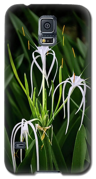 Blooming Poetry 4 Galaxy S5 Case