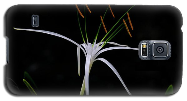 Blooming Poetry Galaxy S5 Case