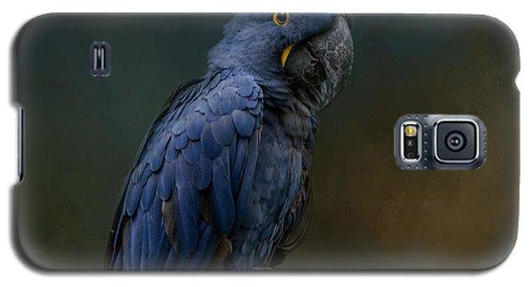 Blue Beauty Galaxy S5 Case
