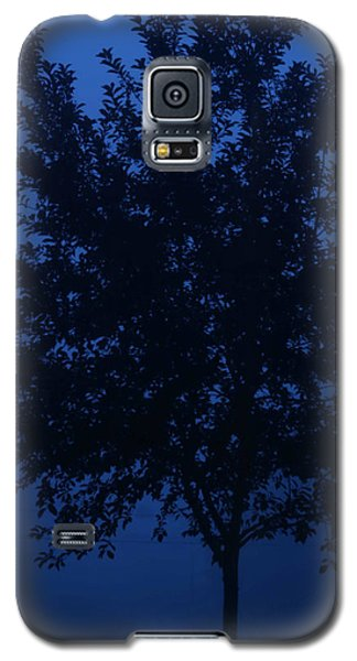 Blue Cherry Tree Galaxy S5 Case