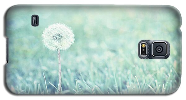 Blue Dandelion Galaxy S5 Case