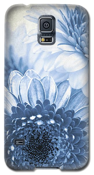 Blue Gerbera Galaxy S5 Case