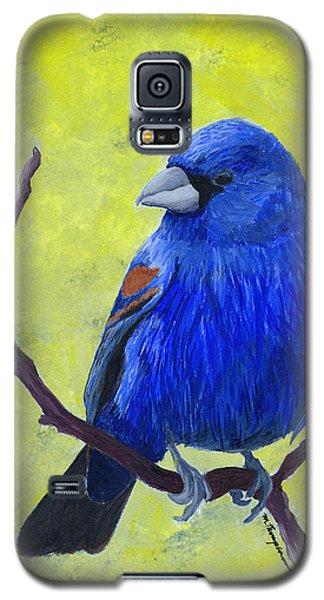 Blue Grosbeak Galaxy S5 Case