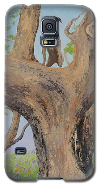 Blue Lacey In A Tree Galaxy S5 Case