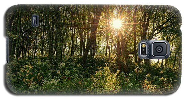 Blue Ridge Parkway - Last Of Summers Light, North Carolina Galaxy S5 Case