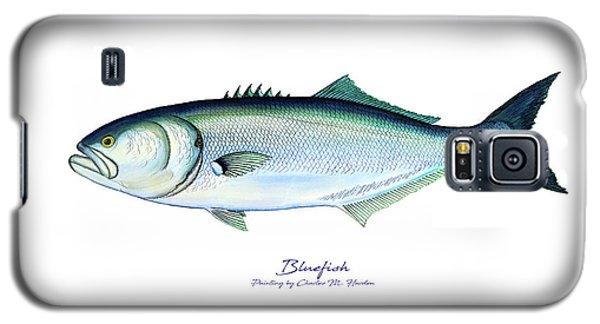 Bluefish Galaxy S5 Case