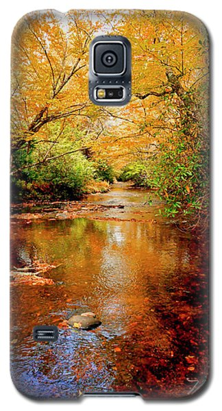 Boone Fork Stream Galaxy S5 Case