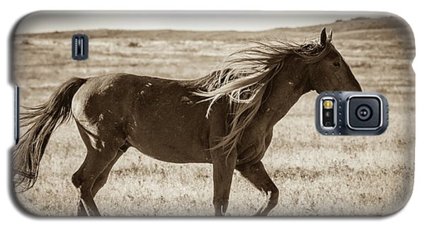 Born To Be Wild Galaxy S5 Case