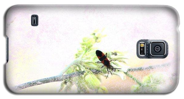 Boxelder Bug In Morning Haze Galaxy S5 Case