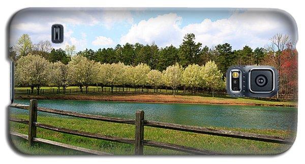 Bradford Pear Trees Blooming Galaxy S5 Case