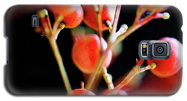 Brazilian Pepper 0423 Galaxy S5 Case