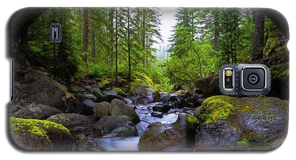 Bridge Below Rainier Galaxy S5 Case