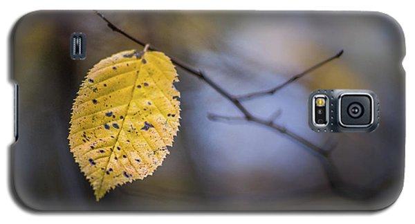 Bright Fall Leaf 1 Galaxy S5 Case