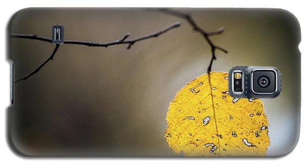 Bright Fall Leaf 7 Galaxy S5 Case