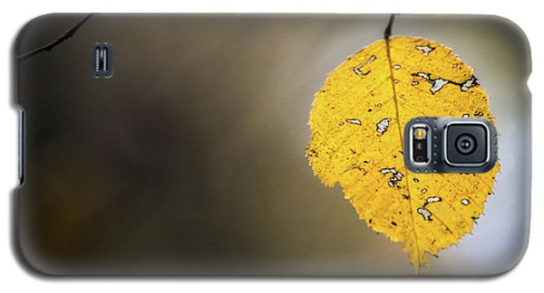 Bright Fall Leaf 7 Galaxy S5 Case