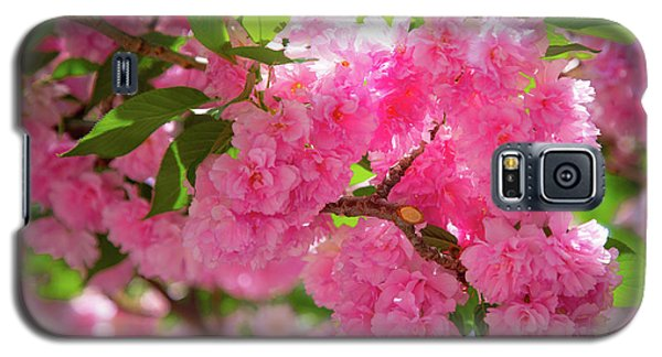 Bright Pink Blossoms Galaxy S5 Case