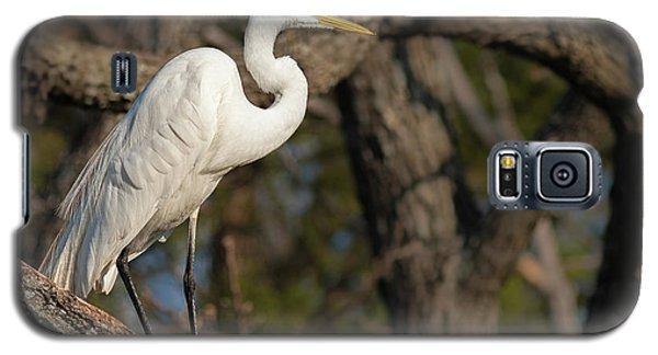 Bright White Heron Galaxy S5 Case