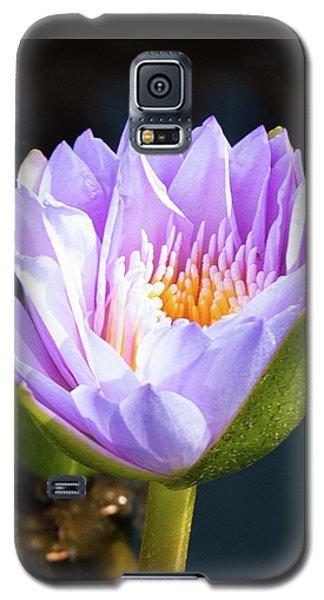 Brillance In Purple Galaxy S5 Case