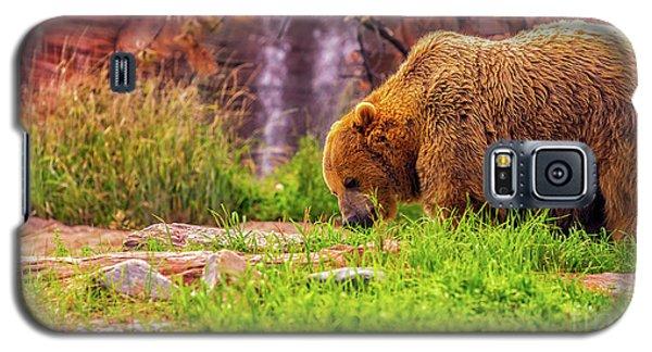 Brisk Walk Galaxy S5 Case