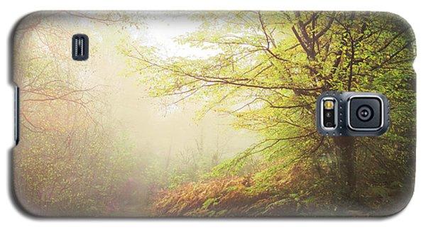 Broceliand Path Galaxy S5 Case