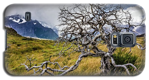 Burnt Tree, Torres Del Paine, Chile Galaxy S5 Case