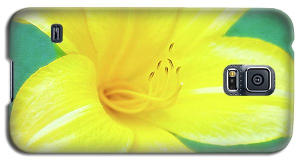 Buttered Popcorn Daylily In Her Glory Galaxy S5 Case