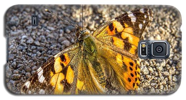 Butterfly Beauty  Galaxy S5 Case