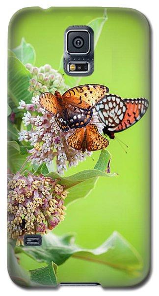 Butterfly Buffet II Galaxy S5 Case