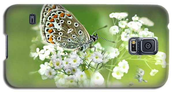Butterfly On Babybreath Galaxy S5 Case