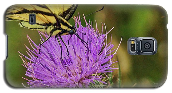 Butterfly On Bull Thistle Galaxy S5 Case