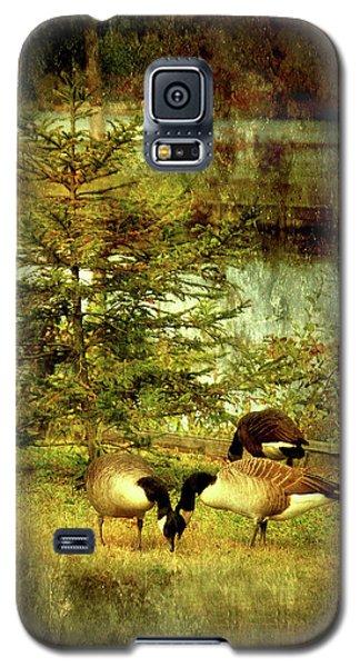 By The Little Tree - Lake Carasaljo Galaxy S5 Case