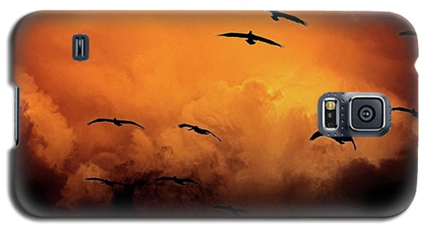 California Exodus Galaxy S5 Case