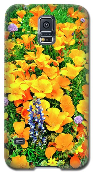 California Poppies And Betham Lupines Southern California Galaxy S5 Case