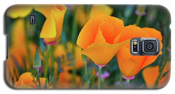 California Poppies Lake Elsinore Galaxy S5 Case