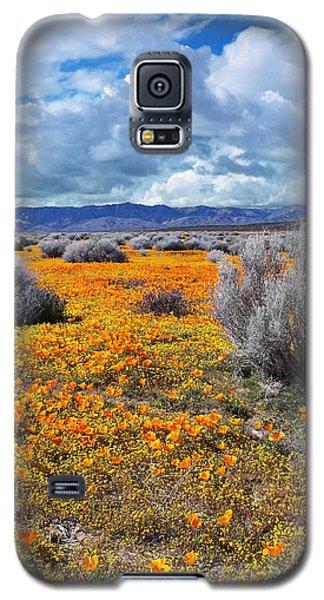 California Poppy Patch Galaxy S5 Case