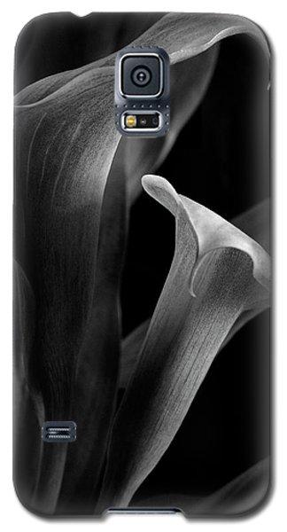 Callalily Galaxy S5 Case