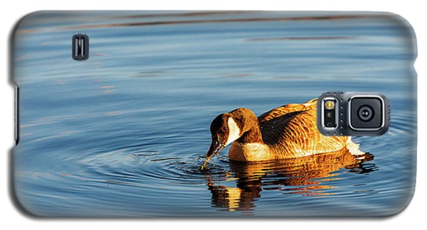 Canada Geese At Marsh Island Galaxy S5 Case
