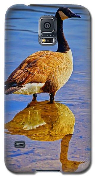 Canadian Goose Galaxy S5 Case