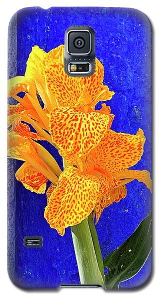 Canna Azure Galaxy S5 Case