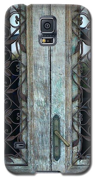 Capri Door Galaxy S5 Case