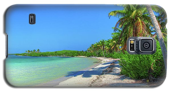 Caribbean Palm Beach Galaxy S5 Case