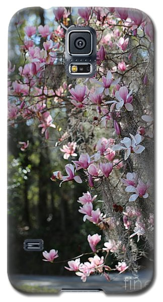 Saucer Magnolia Galaxy S5 Case - Cascading Pink Magnolias With Spanish Moss by Carol Groenen
