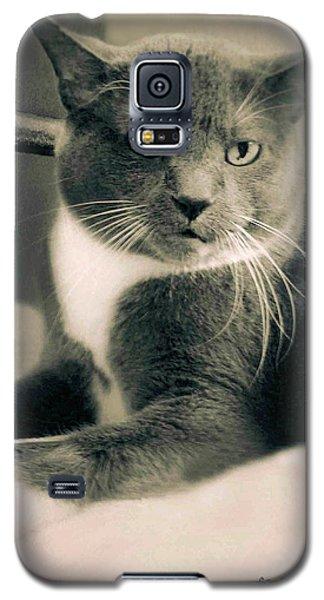Cat Boticas Portrait  7 Galaxy S5 Case
