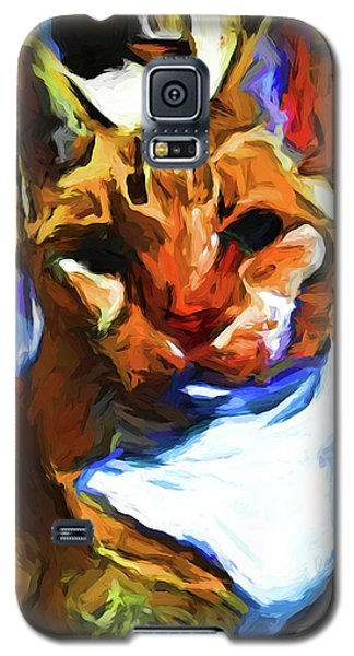 Cats In Shadows And Light Galaxy S5 Case