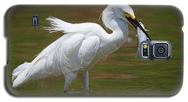 Caught Galaxy S5 Case